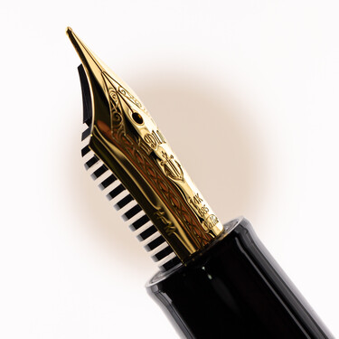 Sailor 1911 Standard Fountain Pen Demonstrator & Gold