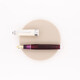 Sailor Professional Gear Fountain Pen Angel's Delight Special Edition