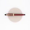 Aurora Ipsilon Satin Fountain Pen Red Rose Gold
