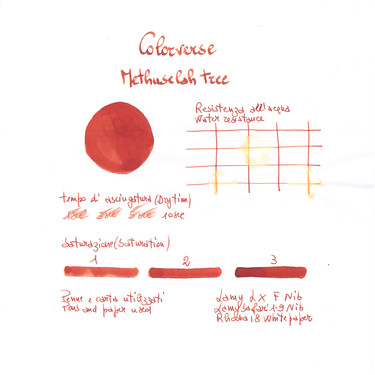 Colorverse Methuselah Tree & Methuselah Grove Ink Bottle 65 + 15 ml