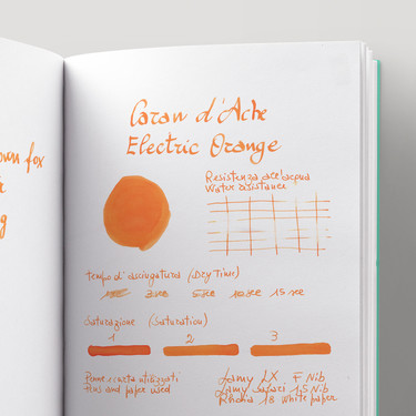 Caran d'Ache Electric Orange 6 Ink Cartridges